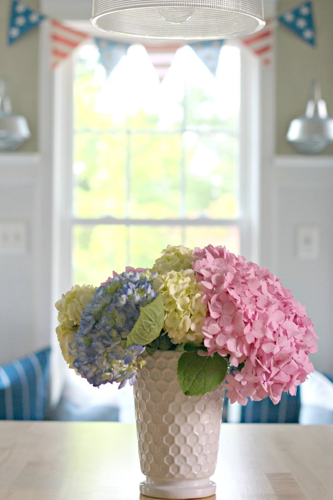 red white and pink hydrangeas