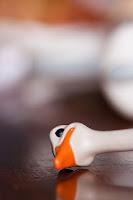 Pequeño pato descansando después de jugar