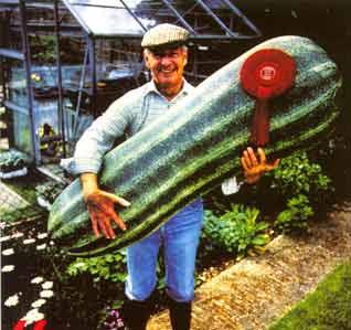 Gemodder in de marge juli 2011 - De komkommers ...