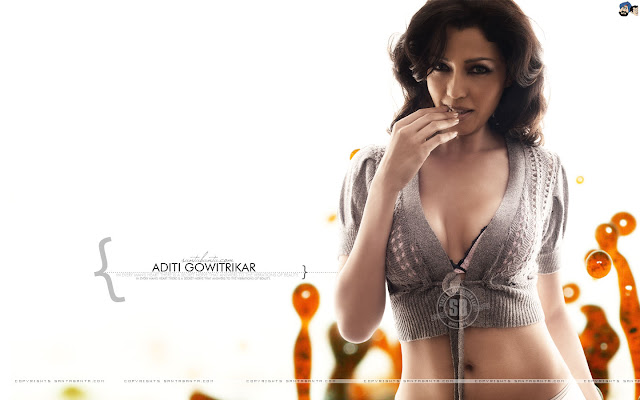 Aditi Govarikar Hot Wallpapers