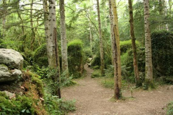 http://3.bp.blogspot.com/-WrWPYatXUCY/Tbq5LlS8wpI/AAAAAAAAABU/YTWHmyI7JKs/s1600/labyrinthe-vert-de-nebias.11678.large_slideshow.jpg