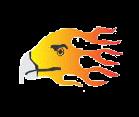 logo firebird