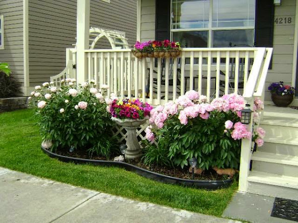 Chill decoraci n ventanas y porches - Decoracion porches ...