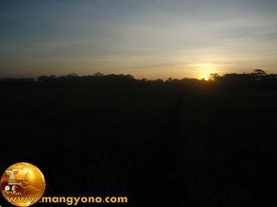 Setiap hari bangun pagi-pagi buta ke kebun atau sawah dan pulang sore buta