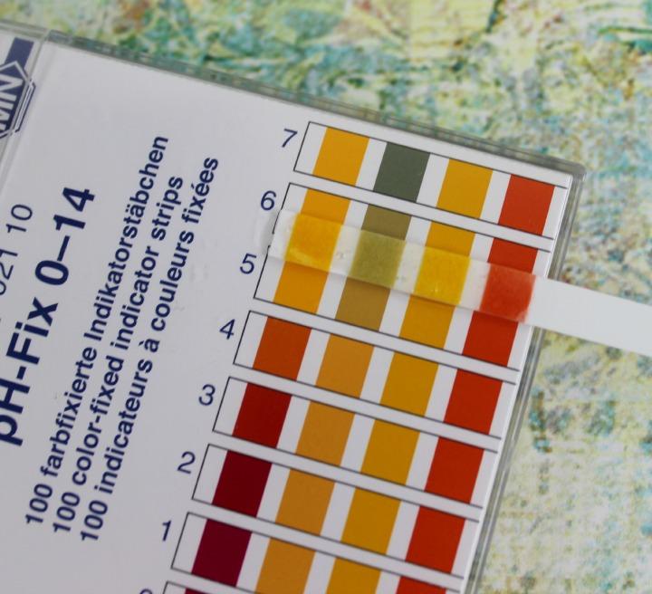 Pacifica Sea Foam Complete Face Wash pH level