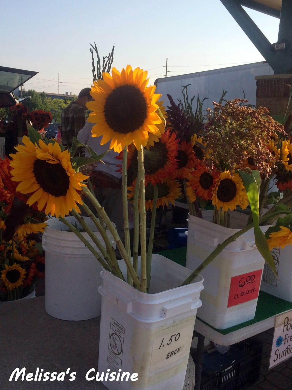 Melissa's Cuisine: A Trip to the Farmer's Market