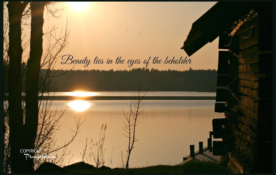 Beauty lies in the eyes of the beholder