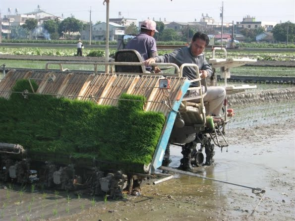 Ini Dia 3 Jenis Mesin Pertanian Modern yang Bisa Disediakan