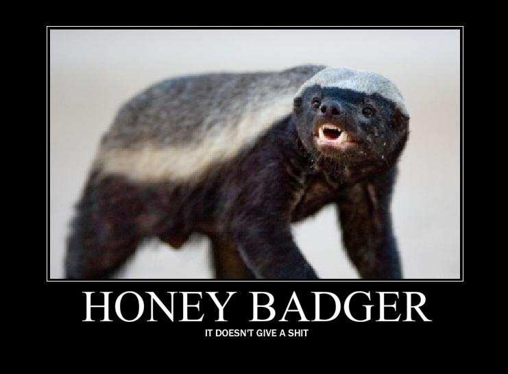 Honey badger vs lion testicles - photo#17