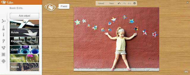 picmonkey free photo editing for beginners auto adjust image