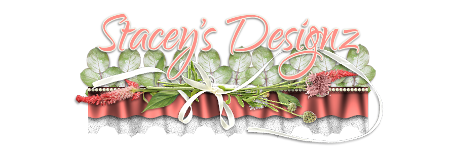 Stacey's Designs