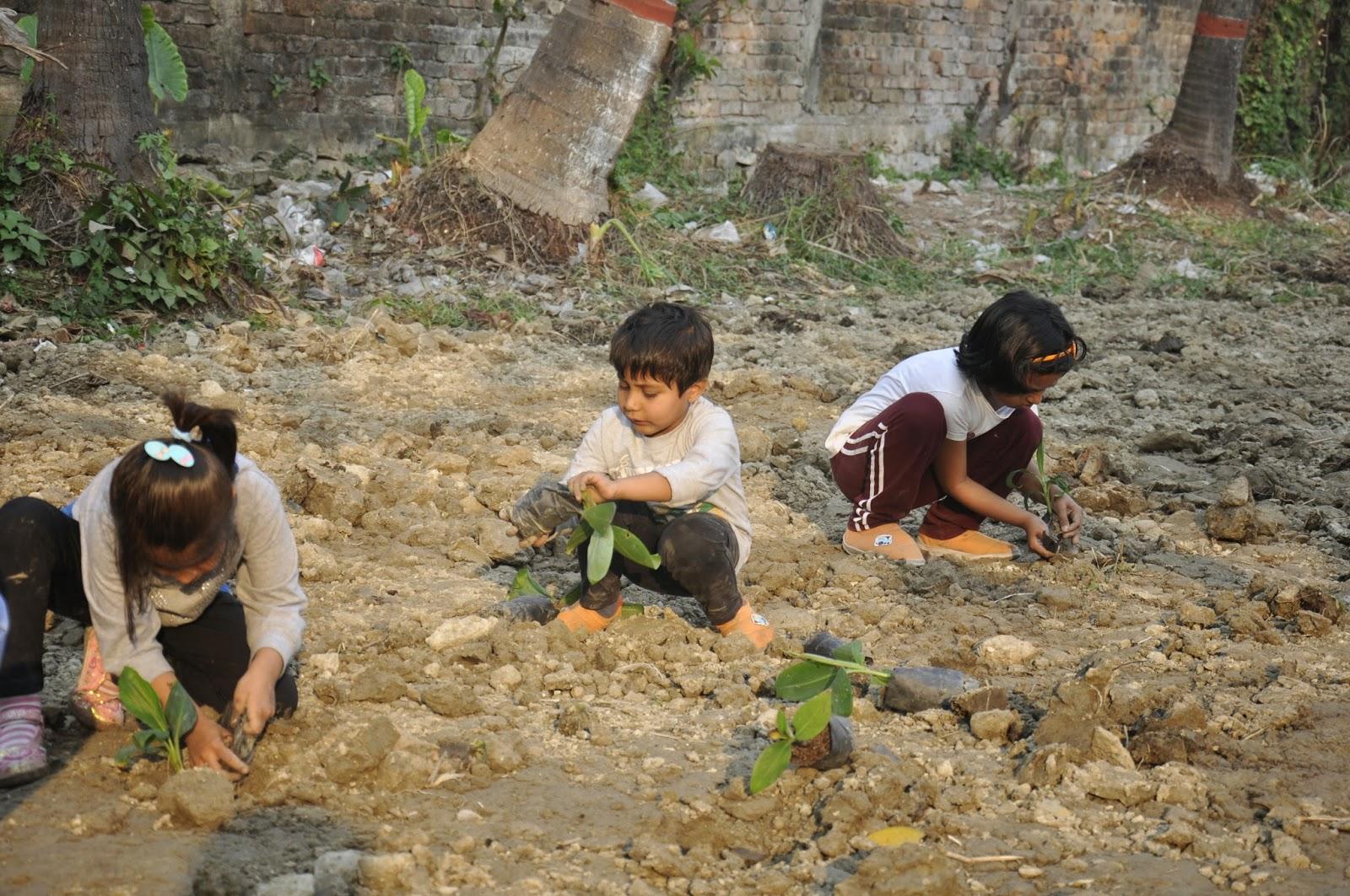 A favourite fruit of all children, Pushti and Kapish Khemka planted over 50 banana saplings withSharanya