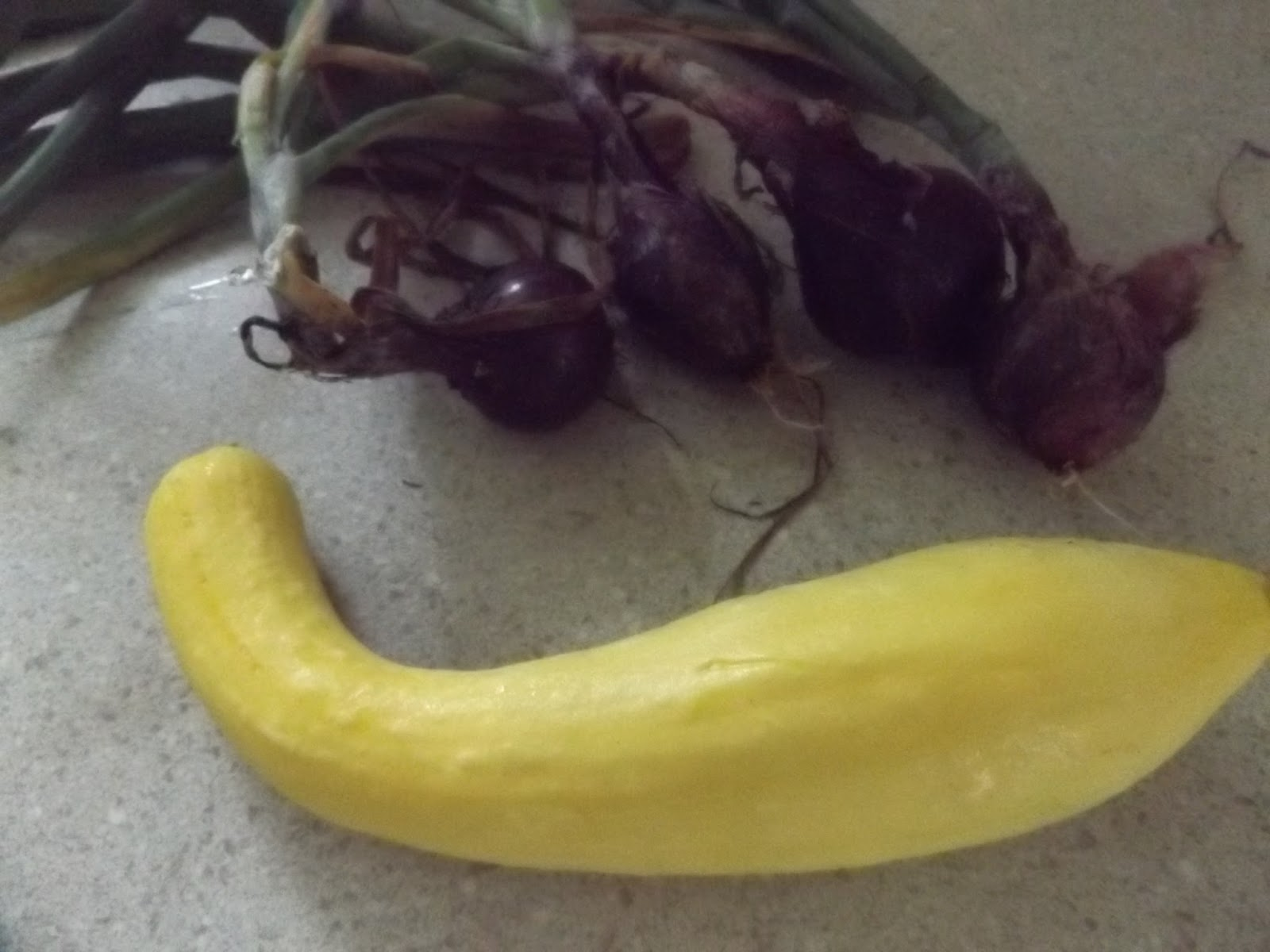 how to cook big yellow squash