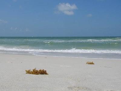 Photo de la plage et de la mer sur l'île d'Anna Maria en Floride
