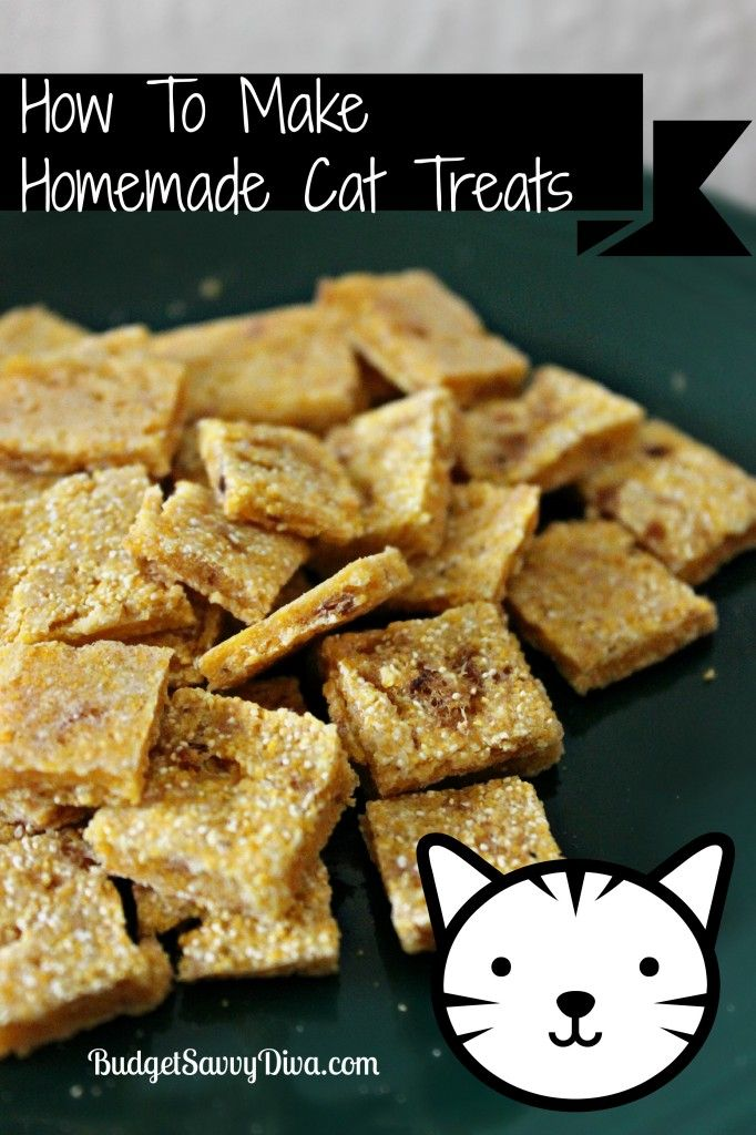 Cat food easy homemade cat food recipes cat information center cat food is food intended for consumption by cats cats have requirements for their specific dietary nutrients certain nutrients including many vitamins forumfinder Gallery