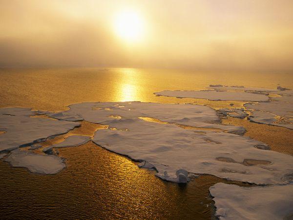 Mendekteksi Perubahan Iklim di Perairan Hangat