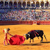 Don't Bring Google Glass to a Bullfight