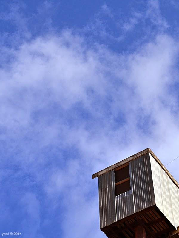 port adelaide skybox