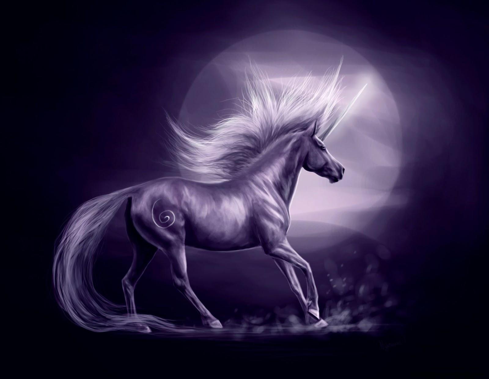 Fantasy Unicorn Background Wallpaper Full Hd Wallpapers