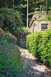 Wendy Holden's Garden