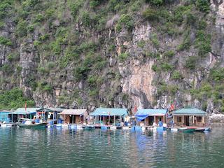 Villge de pêche de Cua Van, Quang Ninh