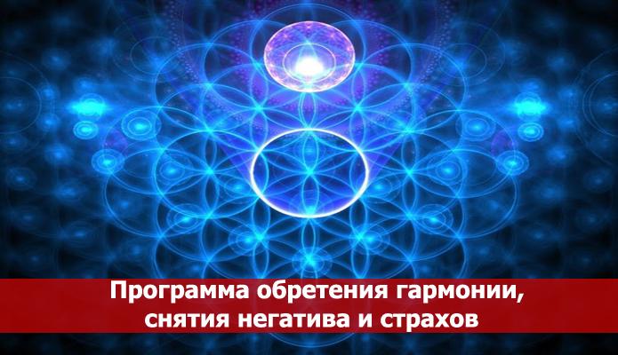 Программа воплощения космической души состоит из индивидуального кармического плана и