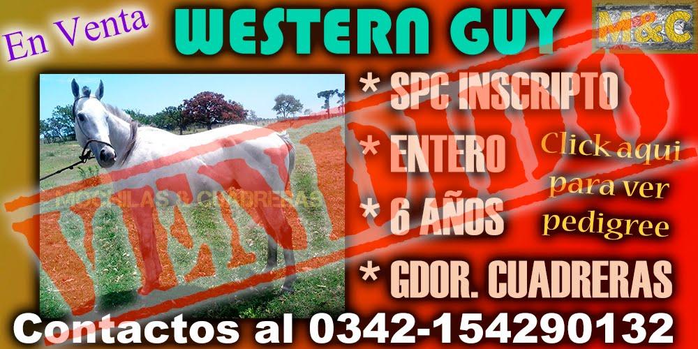 WESTERN GUY - 01/11/15