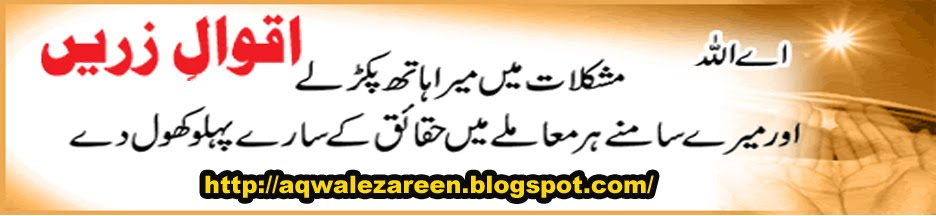 Aqwal e zareen in Urdu
