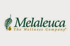 The Wellness Company