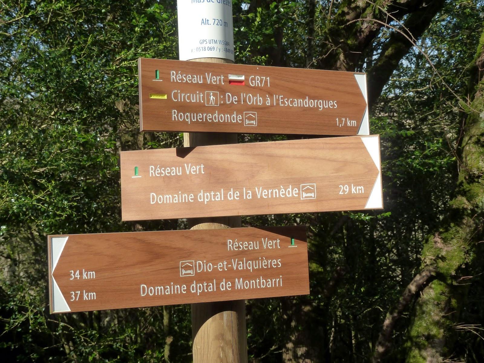 [CR] GTH34, de Bédarieux à Montpellier. Du 03 au 07 mars 2015. P1060772