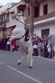 Maestría en la monta a caballo
