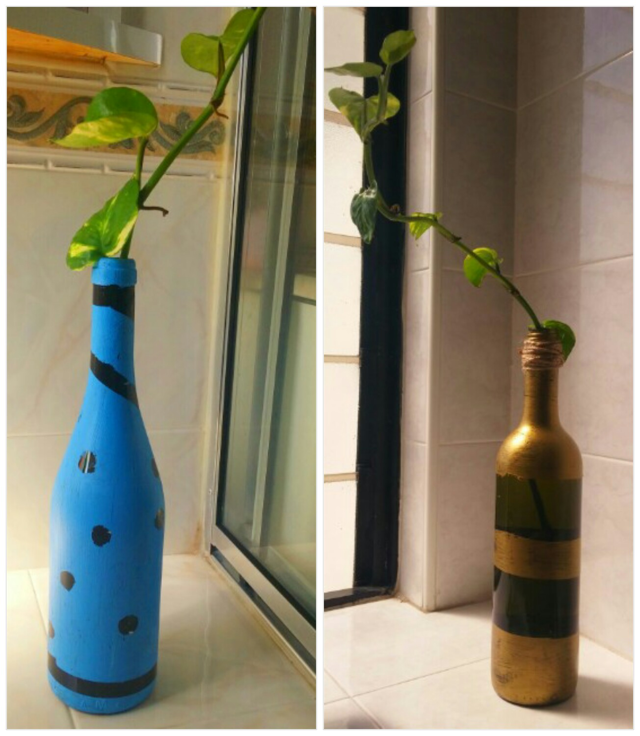 A creative project art and plant science recycling wine for Recycling wine bottles creatively