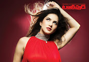 Sunny Leone Tollywood Magazine Photo Shoot-thumbnail-1