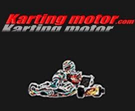Karting motor