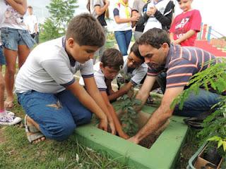 Dia de Defesa da Floresta é celebrado com plantação de mudas