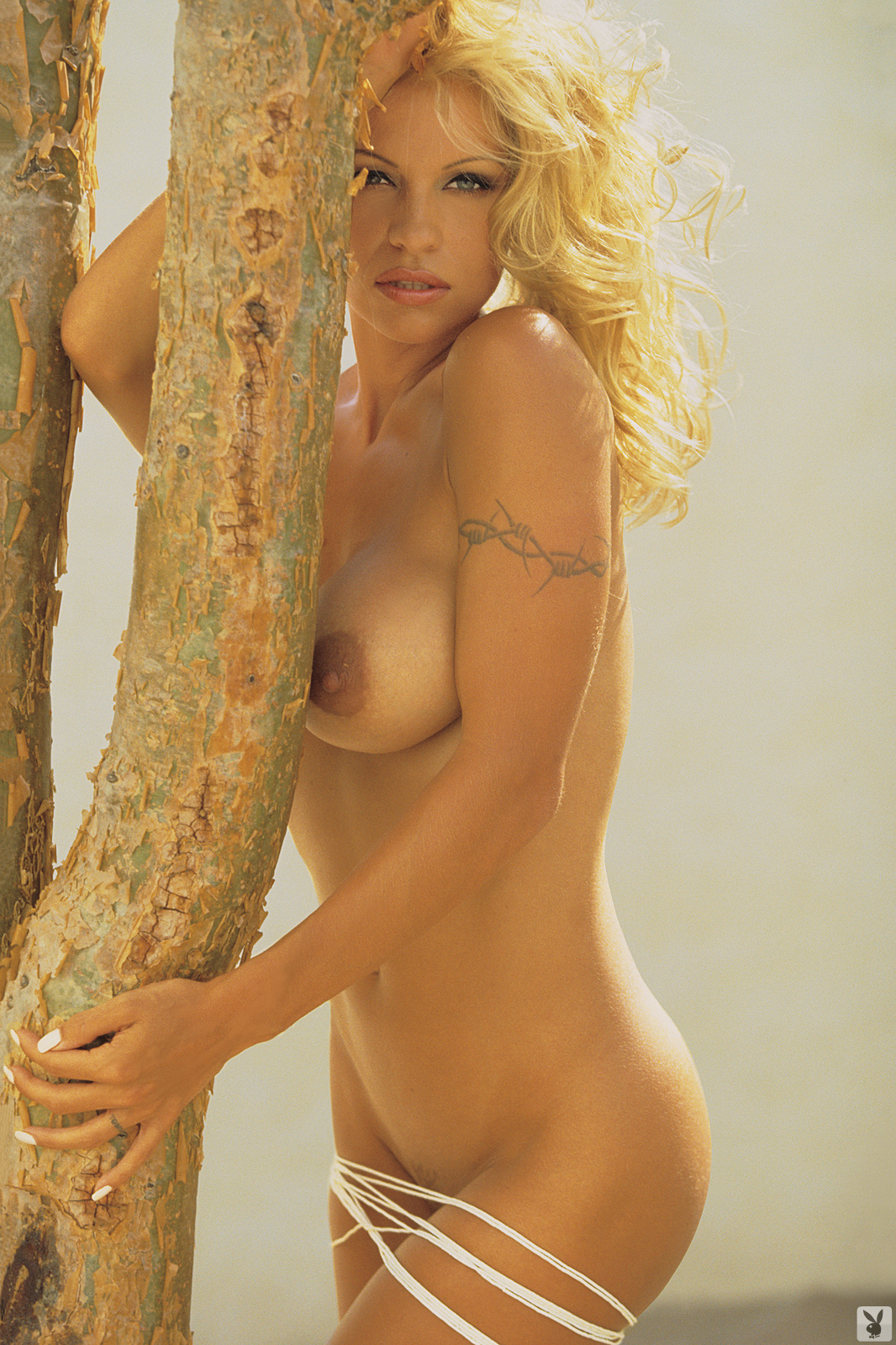 from Paxton pam anderson naked in playboy