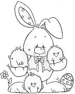 coelho com pintinhos