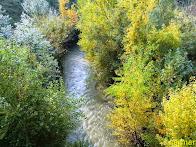 Discreto río Huerva