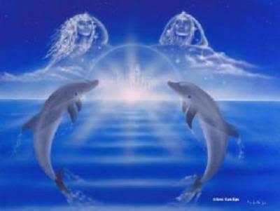 CeliaFenn DelfinesGemelos Imagenes y Fotos de delfines...