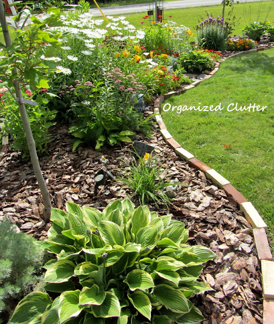 Annual, Perennial and Junk Garden