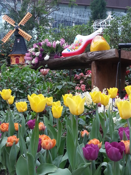Garden By The Bay Flower Festival tesyasblog : tulip festival at gardensthe bay