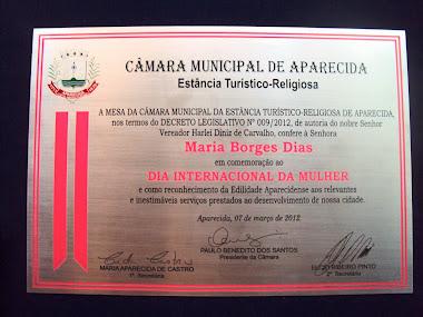 PLACAS DE HOMENAGEM NA MOLDURA EM AÇO INOX ESCOVADO CÂMARA DE VEREADORES APARECIDA-SÃO PAULO