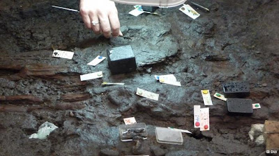Archaeologists revise image of ancient Celts