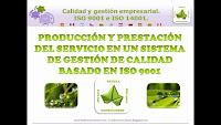 Producción y prestación del servicio ISO 9001