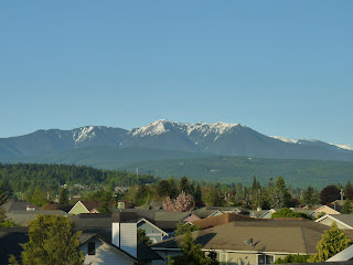 View of the Olympic Mountains Spring 2012