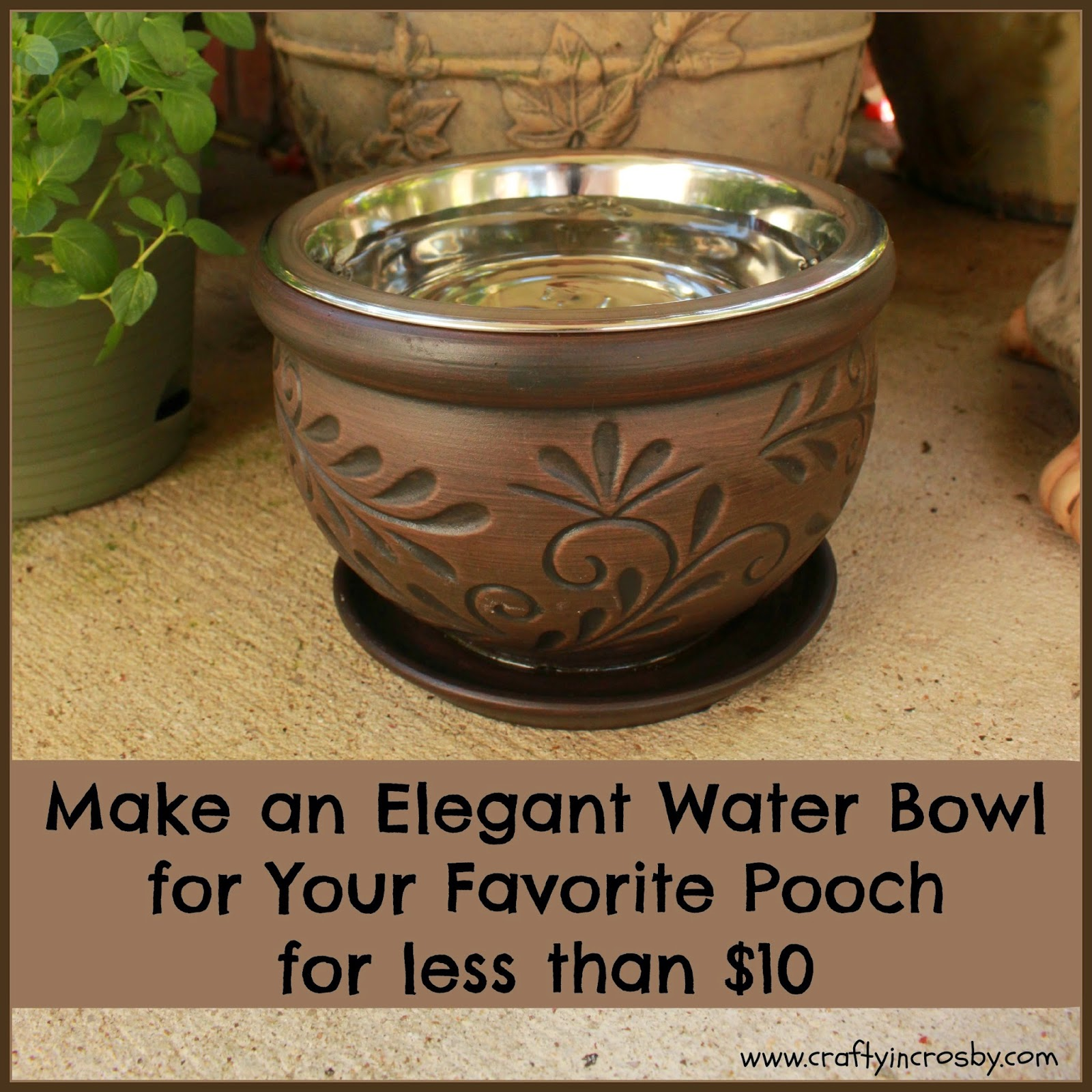 dog bowl, elevated dog bowl