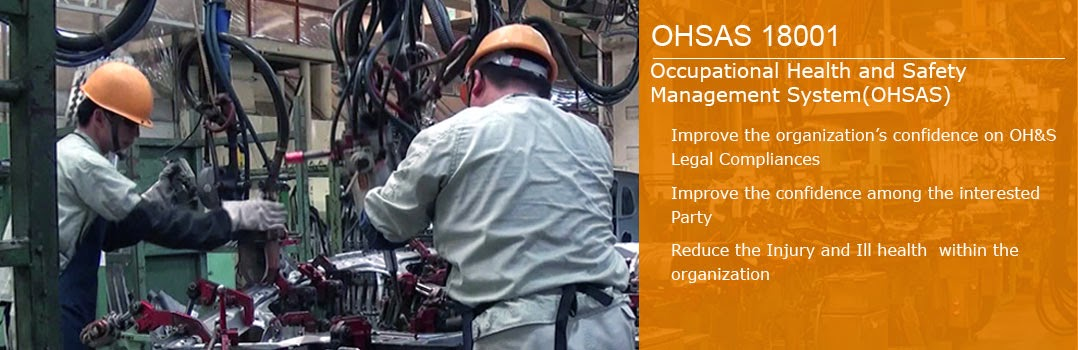 occupational health and safety system Workplace safety and health management practical guidelines on the implementation and maintenance of an occupational safety, health and welfare management system.