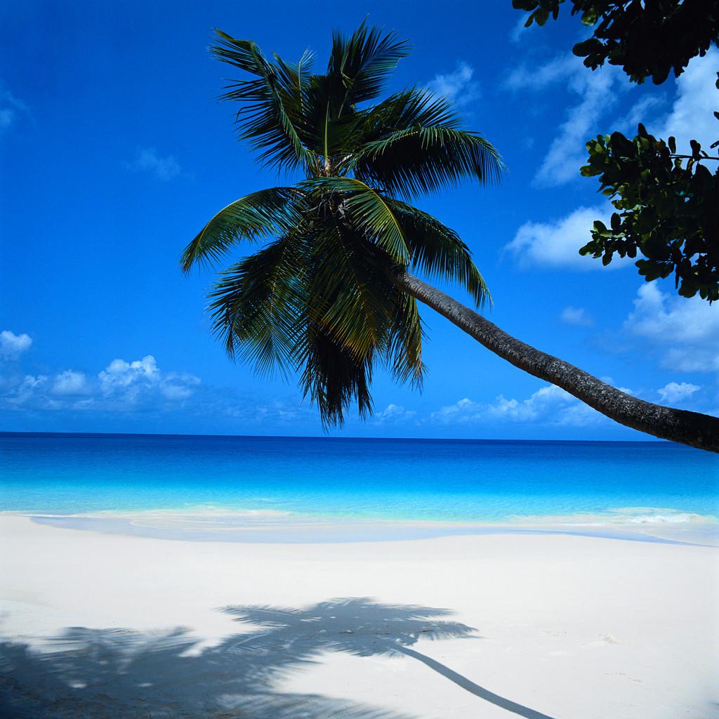 http://3.bp.blogspot.com/-WxhgVdDaeQM/UBbFmaZ9PqI/AAAAAAAAAI4/0cyTlUQWJtc/s1600/playas-cancun-vuelos-baratos-con-encanto-escapada-de-fin-de-semana.jpg