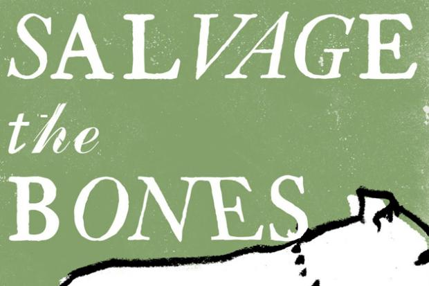 On teaching Jesmyn Ward's Salvage the Bones