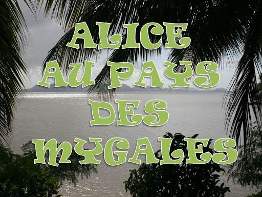 ALICE AU PAYS DES MYGALES
